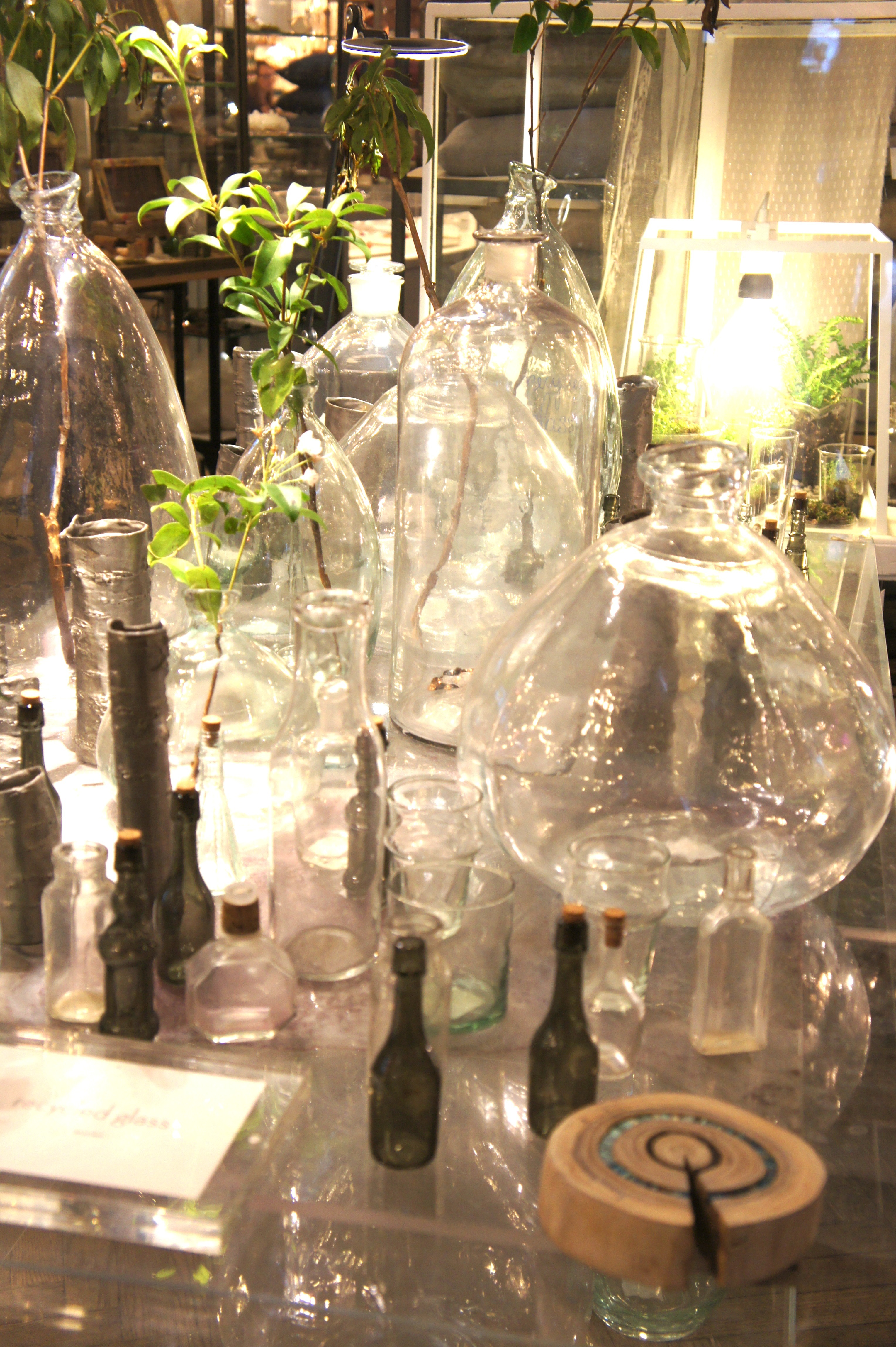 Glass Vases shot in NYC