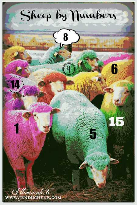 sheep by numbers 2